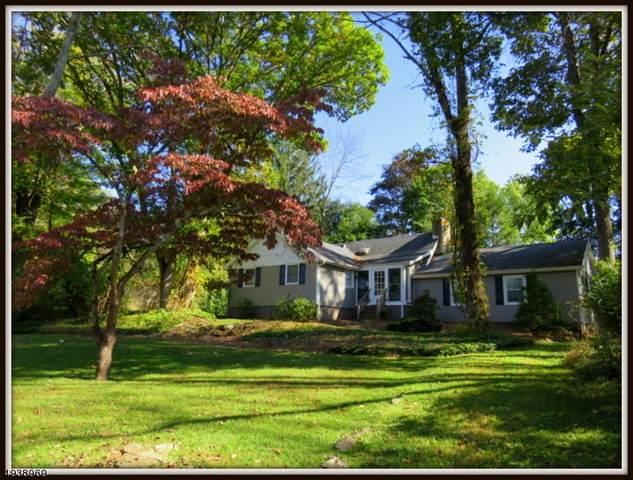 938 Cedar Drive, Stillwater Twp., NJ 07860 (MLS #3595152) :: Mary K. Sheeran Team