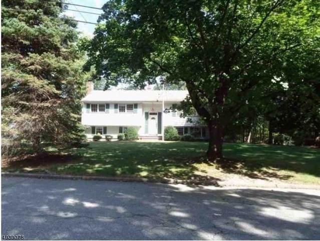3 Josephine Ct, Hillsdale Boro, NJ 07642 (MLS #3595240) :: Weichert Realtors