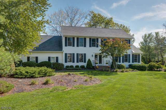 8 Concord Rd, Hanover Twp., NJ 07981 (MLS #3595340) :: The Douglas Tucker Real Estate Team LLC