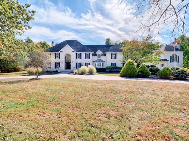 1 Pine Pl, Clinton Twp., NJ 08801 (#3595554) :: Jason Freeby Group at Keller Williams Real Estate
