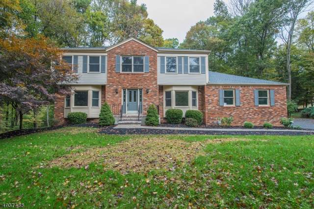 91 Pleasant Hill Rd, Randolph Twp., NJ 07869 (MLS #3595565) :: The Sue Adler Team
