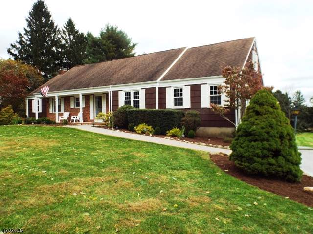 4 Mt View Dr, Chester Twp., NJ 07930 (MLS #3595630) :: The Douglas Tucker Real Estate Team LLC