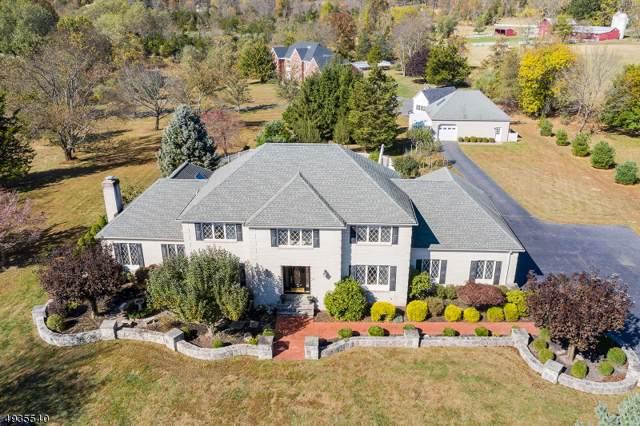 4 Proprietor Ln, Readington Twp., NJ 08889 (#3595765) :: Jason Freeby Group at Keller Williams Real Estate