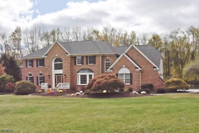5 Meadow Brook Rd, Chester Twp., NJ 07930 (MLS #3595817) :: The Douglas Tucker Real Estate Team LLC