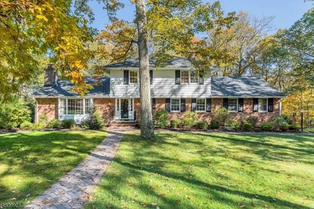6 Pepperidge Tree Ter, Kinnelon Boro, NJ 07405 (MLS #3596517) :: The Dekanski Home Selling Team