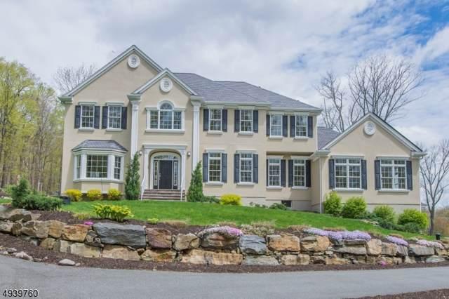 53 Lyonsville Rd, Rockaway Twp., NJ 07005 (MLS #3596558) :: Team Francesco/Christie's International Real Estate