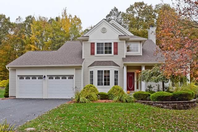 106 Connelly Ave, Mount Olive Twp., NJ 07828 (MLS #3596561) :: Team Francesco/Christie's International Real Estate