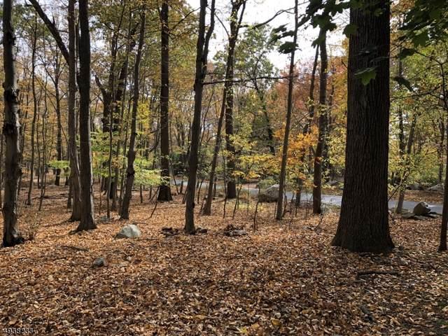 8 Beavers Rd, Tewksbury Twp., NJ 07830 (MLS #3596821) :: The Sikora Group