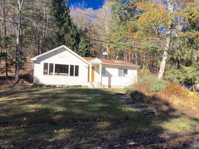 916 N Brooklake Trl, Stillwater Twp., NJ 07860 (MLS #3596997) :: SR Real Estate Group