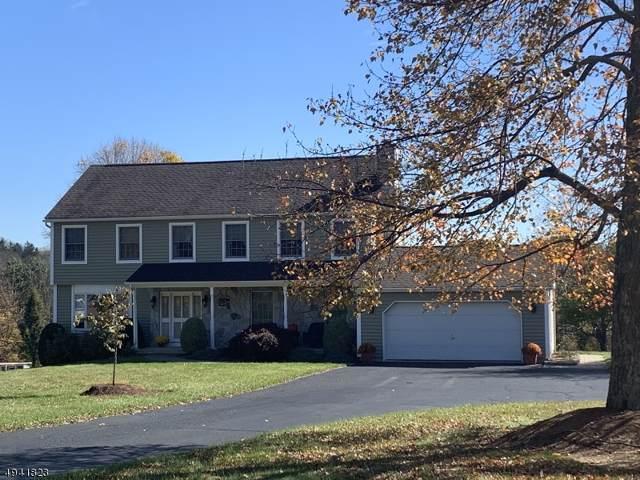 52 Lowe Rd, Wantage Twp., NJ 07461 (MLS #3598517) :: Weichert Realtors