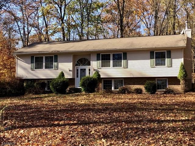 305 Knoll Rd, Hampton Twp., NJ 07860 (MLS #3598798) :: SR Real Estate Group