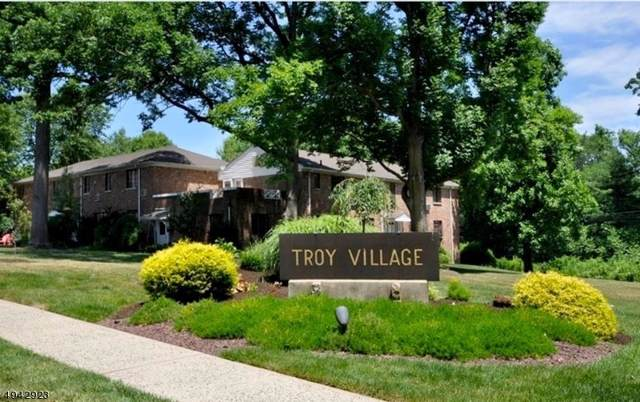 21 Troy Dr Bldg 3 21-D, Springfield Twp., NJ 07081 (MLS #3598888) :: Pina Nazario