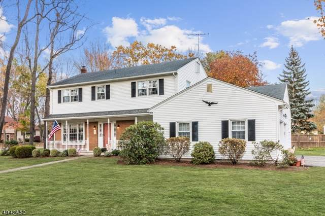 10 Walnut Ter, East Hanover Twp., NJ 07936 (MLS #3599770) :: SR Real Estate Group