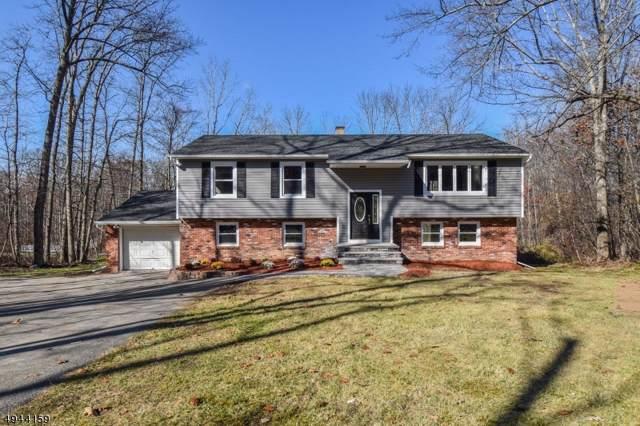 60 Possaghi Rd, Hampton Twp., NJ 07860 (MLS #3600056) :: William Raveis Baer & McIntosh