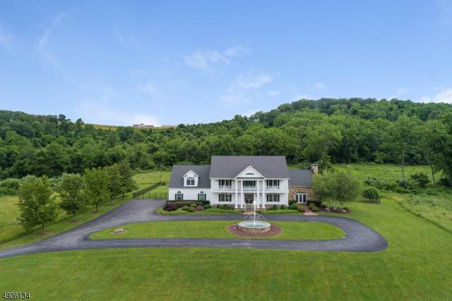 384 Mountain View Rd, Franklin Twp., NJ 08802 (MLS #3600161) :: The Sue Adler Team