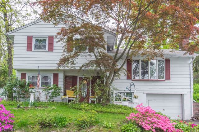 101 Algonquin Trl, Wayne Twp., NJ 07470 (MLS #3601180) :: Mary K. Sheeran Team