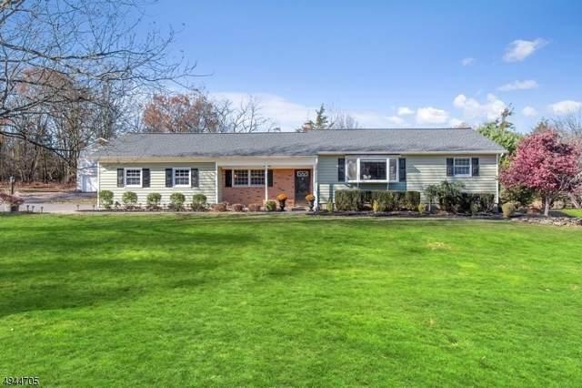 7 Demott Dr, Readington Twp., NJ 08889 (MLS #3601615) :: SR Real Estate Group