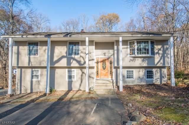 11 Knoll Drive, Denville Twp., NJ 07866 (MLS #3601642) :: Weichert Realtors
