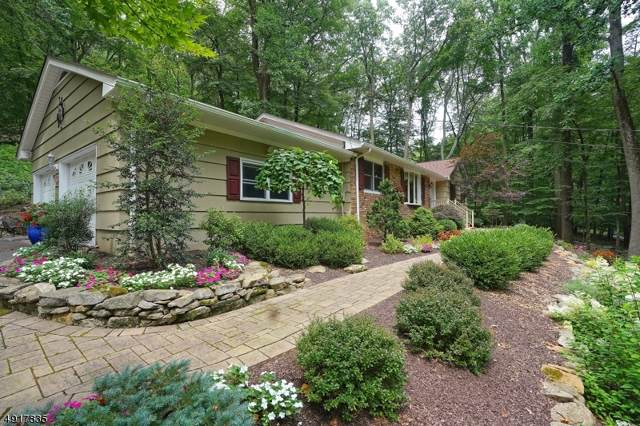 137 Black Brook Rd, Bethlehem Twp., NJ 08827 (MLS #3601688) :: Coldwell Banker Residential Brokerage