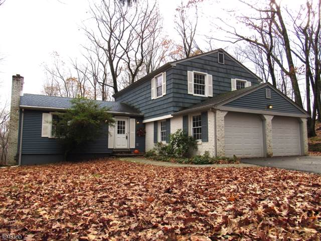 10 Long Ridge Rd, Parsippany-Troy Hills Twp., NJ 07869 (MLS #3601904) :: Weichert Realtors