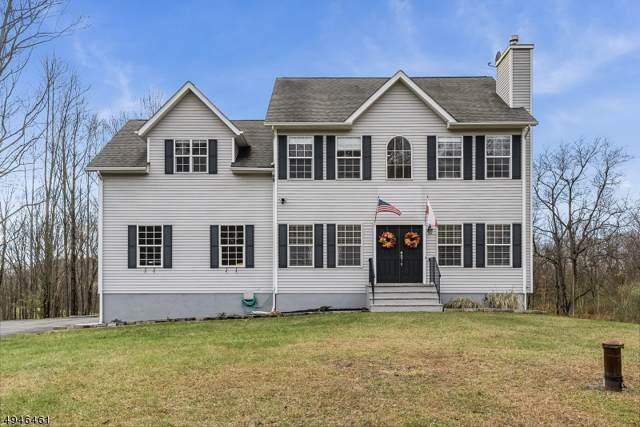 13 Alpine Ct, Lafayette Twp., NJ 07848 (MLS #3602281) :: William Raveis Baer & McIntosh