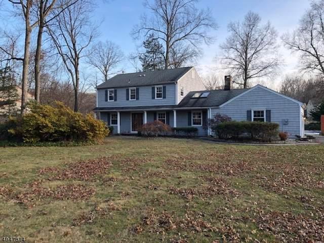 19 Birchwood Ln, Boonton Twp., NJ 07005 (MLS #3603395) :: Vendrell Home Selling Team