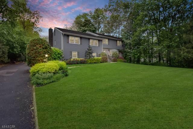 10 Westview Rd, Millburn Twp., NJ 07078 (MLS #3603760) :: SR Real Estate Group