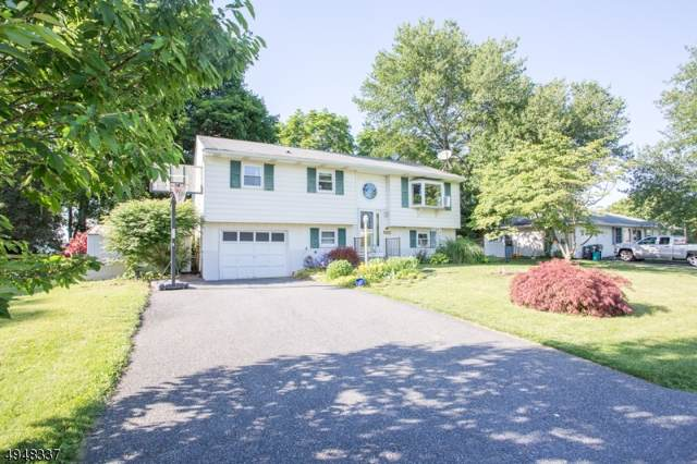 103 Falmer St, Pohatcong Twp., NJ 08865 (MLS #3603917) :: SR Real Estate Group