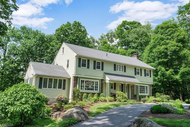 206 Green Ridge Rd, Franklin Lakes Boro, NJ 07417 (MLS #3603948) :: William Raveis Baer & McIntosh