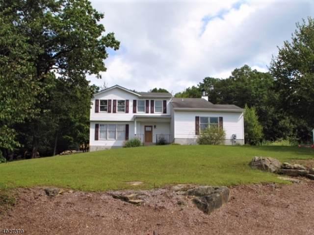 3 Patriot Rd, Jefferson Twp., NJ 07849 (MLS #3604147) :: The Dekanski Home Selling Team