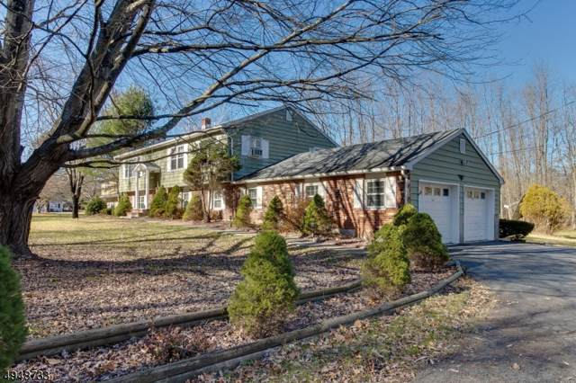 40 Sand Hill Rd, Blairstown Twp., NJ 07825 (#3604431) :: Daunno Realty Services, LLC