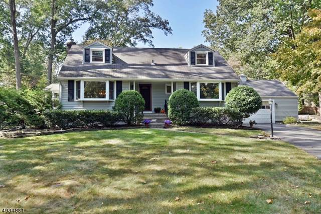 19 Circle End Dr, Ramsey Boro, NJ 07446 (MLS #3604567) :: SR Real Estate Group