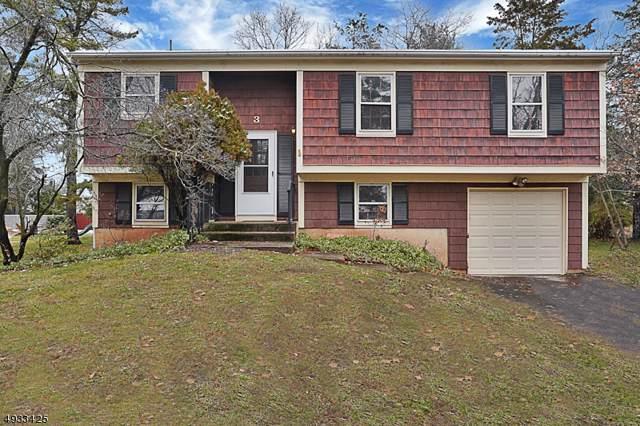 3 Emerald Pl, Franklin Twp., NJ 08873 (MLS #3605389) :: Coldwell Banker Residential Brokerage