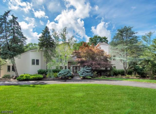 17 Canoe Brook Dr, Livingston Twp., NJ 07039 (MLS #3607245) :: Mary K. Sheeran Team