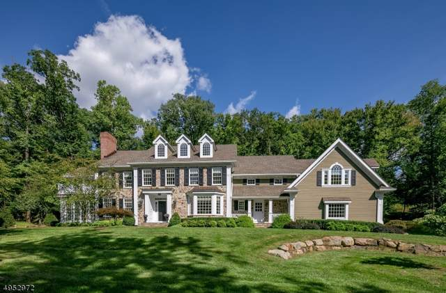 189 Post Kunhardt Rd, Bernardsville Boro, NJ 07924 (MLS #3607860) :: The Dekanski Home Selling Team