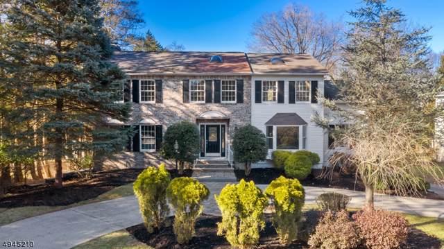 530 W Saddle River Rd, Ridgewood Village, NJ 07450 (MLS #3607992) :: Coldwell Banker Residential Brokerage