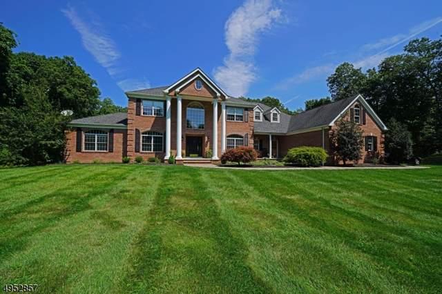 30 Brandy Ridge Rd, Sparta Twp., NJ 07871 (MLS #3608429) :: Mary K. Sheeran Team