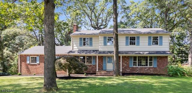 106 Watchung Blvd, Berkeley Heights Twp., NJ 07922 (MLS #3608494) :: Mary K. Sheeran Team