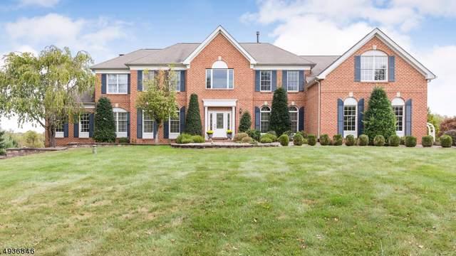11 Christie Way, Branchburg Twp., NJ 08853 (MLS #3609015) :: Vendrell Home Selling Team