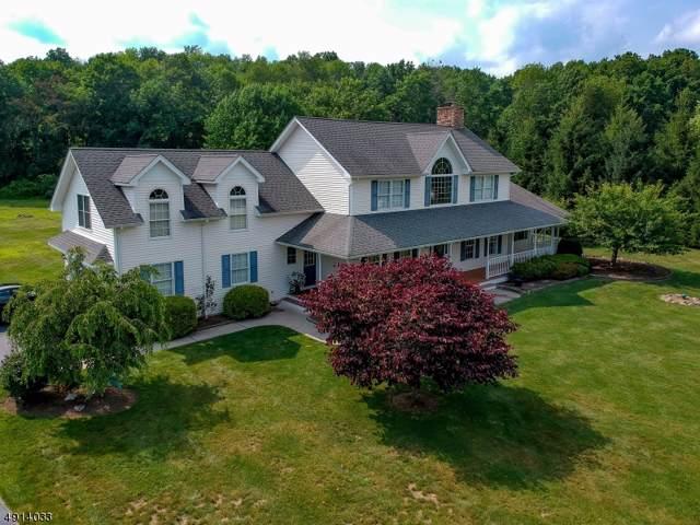 19 Roberts Way, Wantage Twp., NJ 07461 (MLS #3609239) :: Team Francesco/Christie's International Real Estate