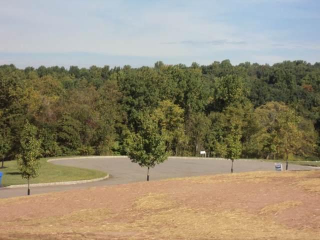 163 Rick Rd, Alexandria Twp., NJ 08848 (MLS #3609405) :: Team Braconi | Christie's International Real Estate | Northern New Jersey