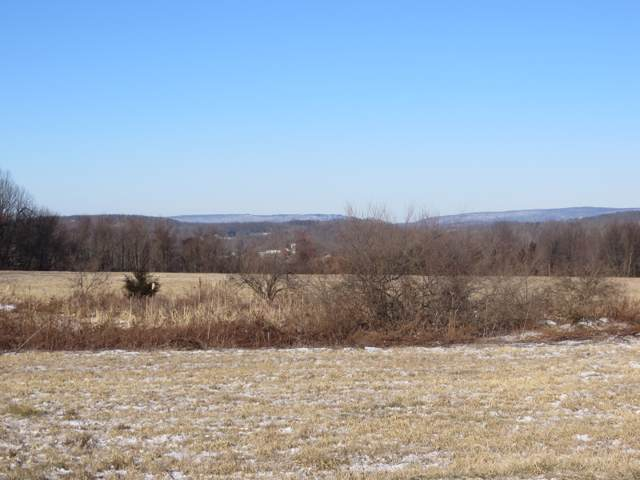 39 Old Beaver Run Rd, Lafayette Twp., NJ 07848 (MLS #3609486) :: William Raveis Baer & McIntosh