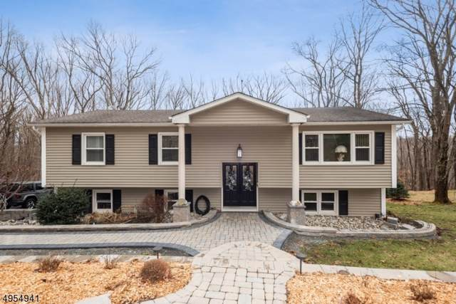 16 Edward Dr, Mount Olive Twp., NJ 07836 (MLS #3609538) :: The Lane Team