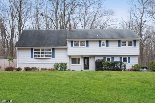 72 Chuckanutt Dr, Oakland Boro, NJ 07436 (MLS #3609807) :: William Raveis Baer & McIntosh