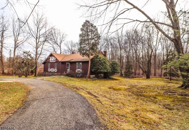 6 Carrell Rd, Randolph Twp., NJ 07869 (MLS #3609956) :: William Raveis Baer & McIntosh