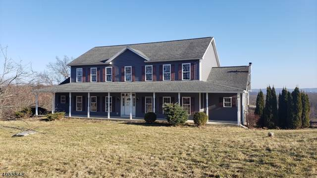 87 Sherman Ridge Rd, Wantage Twp., NJ 07461 (#3610036) :: Daunno Realty Services, LLC