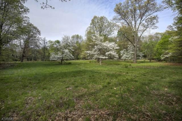 30 Overleigh Rd, Bernardsville Boro, NJ 07924 (MLS #3610189) :: The Dekanski Home Selling Team