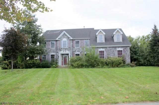 16 Meadowview Dr, Lopatcong Twp., NJ 08865 (MLS #3610250) :: Team Francesco/Christie's International Real Estate