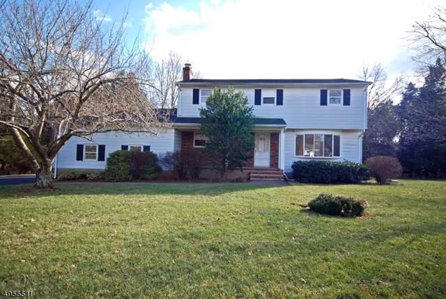 53 Camden Rd, Hillsborough Twp., NJ 08844 (MLS #3610405) :: SR Real Estate Group