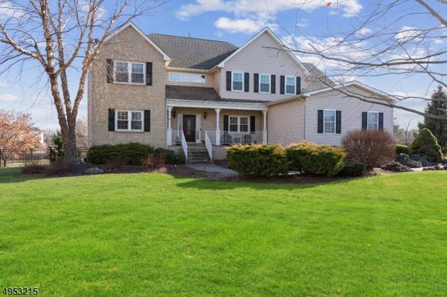 7 White Meadow Rd, Hillsborough Twp., NJ 08844 (MLS #3610450) :: SR Real Estate Group